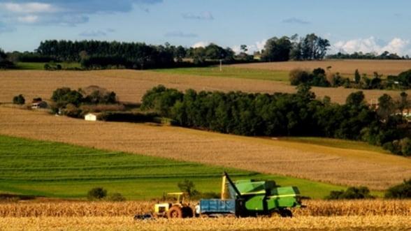 Ministrul Agriculturii: In 2012 va fi o productie mai mica, dar nu in mod alarmant