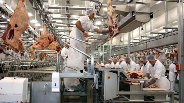 Ministrul Agriculturii: Mari producatori de carne si paine ar putea intra in insolventa