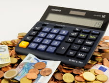Ministrul Rovana Plumb anunta ca absorbtia fondurilor europene a ajuns aproape de media UE