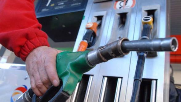 Miting al PMP impotriva accizei la carburanti. Udrea: Cresterea accizei, o bomba pentru economie