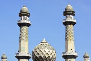 Musulmanii din Austria au reactionat dupa ce guvernul de la Viena a inchis sapte moschei: discrediteaza comunitatea religioasa prin calcul politic