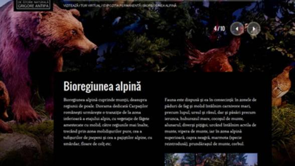 Muzeul Antipa are un nou site