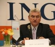Negritoiu: reducerea RMO se putea face si acum un an pentru sectorul privat