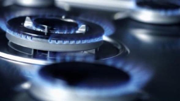 Nicolescu vrea fonduri UE pentru facturile la energie, in cazul consumatorilor vulnerabili