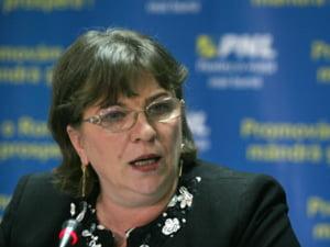 Norica Nicolai: Este nevoie de crearea unui fond de garantare a creditelor pentru femei