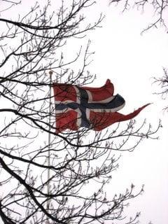 Norvegia vrea sa orienteze fondul de investitii de stat catre plasamente ecologice