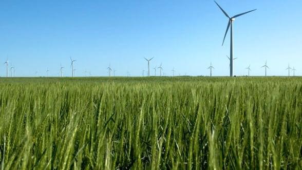 O companie germana vrea sa investeasca intr-un parc eolian in Dobrogea