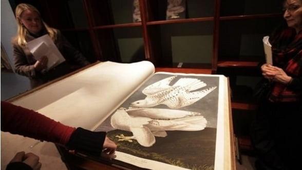 """O editie completa """"The Birds of America"""", vanduta pentru 7,9 milioane de dolari"""
