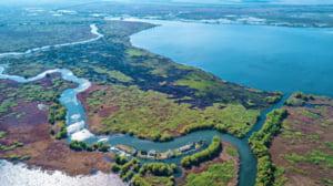O insula de 6.000 mp din Delta Dunarii se vinde cu 350.000 de euro