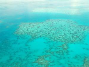 O nava de croaziera a deversat mii de litri de deseuri in zona Marii Bariere de Corali