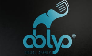 OBLYO DIGITAL AGENCY impune intelegerea caracteristicilor campaniei organice de marketing digital multichannel