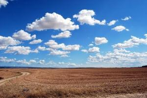 Pașii cei mai importanți ca să vinzi un teren agricol situat în extravilan