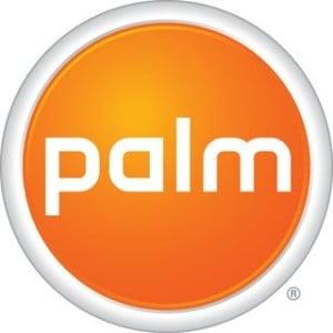 Palm: inca un an de restructurari fara succes