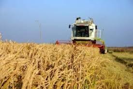 Perchezitii in Bucuresti si doua judete, privind obtinerea ilegala de fonduri UE pentru agricultura