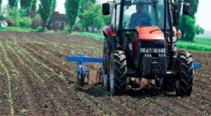 Persoanele care dau in arenda terenurile agricole vor primi 30-100 euro/an pe hectar