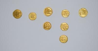 Peste 160 de monede antice furate din siturile rezervatiei arheologice din Muntii Orastiei au fost recuperate