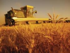 Piata asigurarilor agricole, pe val. Creste cu 10% anual