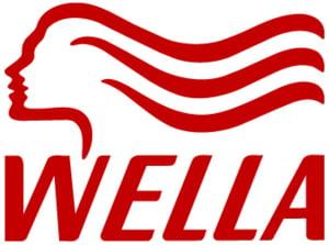 Preluarea Wella Romania de catre Interbrands, analizata de CC