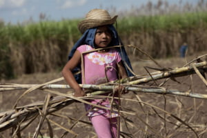 Premiera mondiala: Prima tara care legalizeaza munca minorilor de la 10 ani