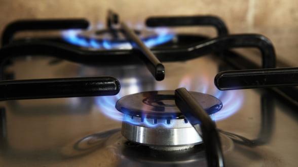 Pretul gazelor de productie interna ar putea fi plafonat abia de la 1 mai