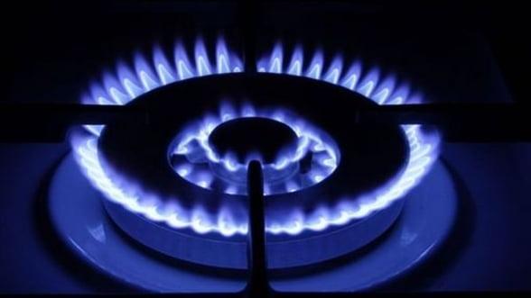 Pretul gazelor si al energiei electrice va creste cu minim 10% pe an