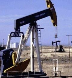 Pretul petrolului a scazut sub 52 dolari/baril in schimburile matinale