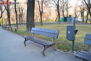 Primaria Sector 1 plateste peste 100.000 de euro ca sa repare si sa vopseasca bancile din parcuri