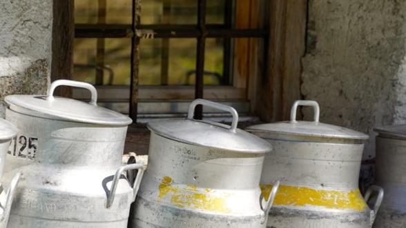 Producatori de lapte, amendati pentru lipsa de igiena si conditiile de transport