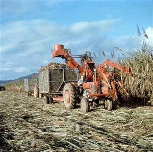 Producatorii i-au solicitat lui Vosganian anularea accizei la motorina utilizata in agricultura