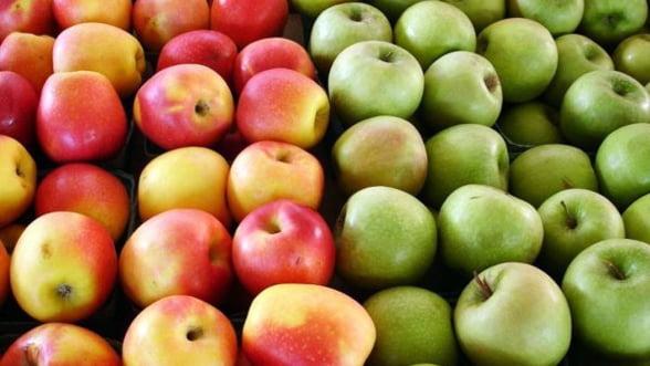Producatorii romani de fructe-legume primesc bani de la UE dupa blocarea importului in Rusia