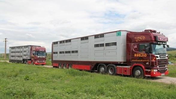 Produsele romanesti, mai cautate la export