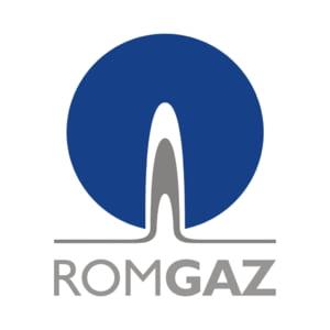 Profitul net al Romgaz a scazut la 528,5 mil. lei in 2009