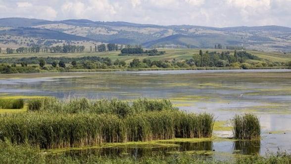 Proiect in valoare de 150.000 de euro pentru reconstructia ecologica a luncii Dunarii