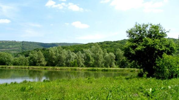 Proiectele finantate prin PES vor acoperi 500.000 de hectare, pana la finele anului
