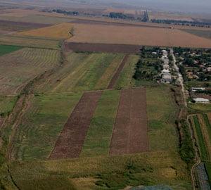 Proprietarii de terenuri, obligati sa le curete