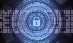 Protectie cibernetica gratuita pentru antreprenori in telemunca