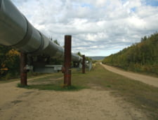 Putin e hotarat sa termine gazoductul Nord Stream 2, cu sau fara Danemarca