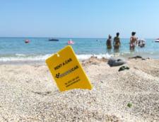 Reteta pentru o vacanta de lux: un partener de incredere pentru inchirieri auto in Constanta si pe tot litoralul
