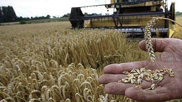 "Romania, ""tinta"" investitorilor straini in agricultura"