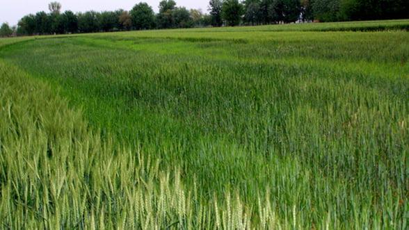 Romania a absorbit 50% fondurile destinate dezvoltarii rurale