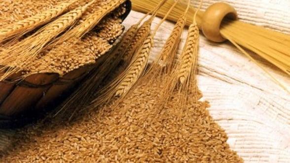 Romania ar putea lua locul Ucrainei in topul comertului cu cereale - Mircea Cosea