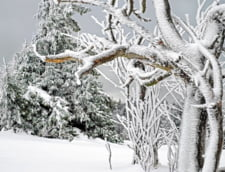 Romania are cea mai mare crestere a turismului in perioada de iarna din UE