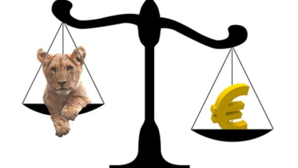 Romania n-ar putea sustine un curs de 4,4 lei/euro nici fara contextul european
