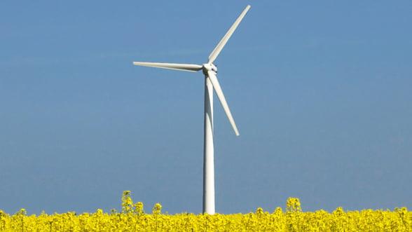 Romania se afirma pe plan european, in sectorul energiei eoliene