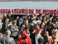 Romanii au 12.353 locuri de munca vacante