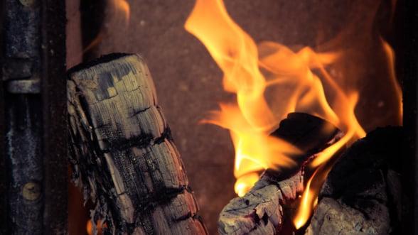 Romanii au cumparat cu 30% mai mult lemn de foc in 2018
