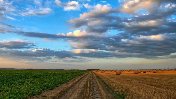 Romanii considera ca agricultura este importanta, dar s-o faca altcineva (sondaj)