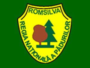 Romsilva a dat amenzi de 21 mil. lei