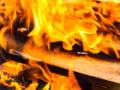 Romsilva atentioneaza ca exista riscuri in asigurarea lemnului de foc pentru populatie