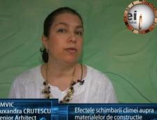Ruxandra Crutescu, senior arhitect AMVIC